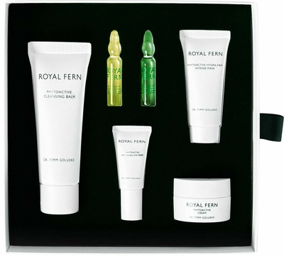 Royal Fern Holiday Kit